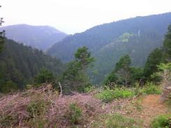 2008_05_02__16.jpg