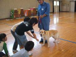 2008_05_150003.jpg