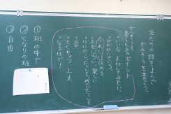 nomaki5.jpg