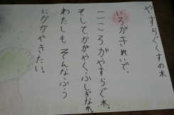 nomaki6.jpg
