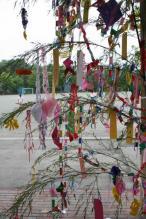 tanabata0002.jpg