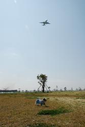 洋と飛行機
