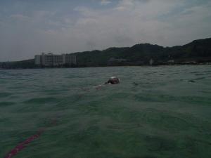 Swimmingoo
