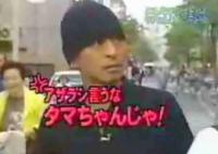 【ガキの使い】みんなのアイドル♪あざらしタマちゃんを捜しに行こう!!