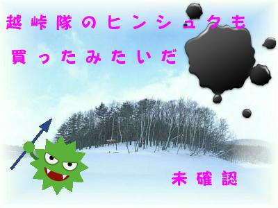コピー ~ DSCN1302
