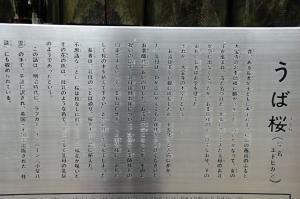 14大宝寺