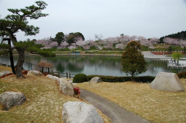 1藤山健康文化公園