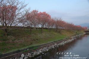 2DSC_51580001.jpg