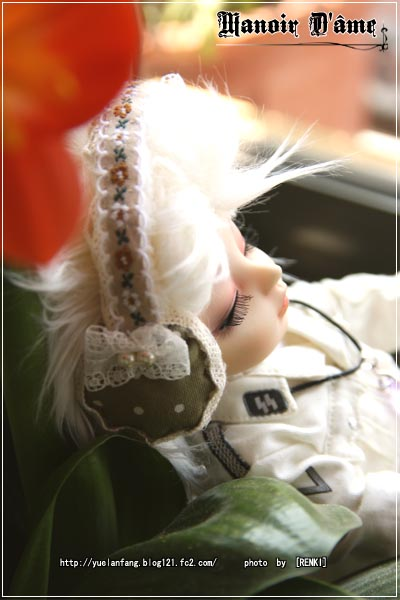 5L01.jpg