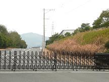 トヨタ九州1