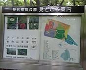 神代植物公園①