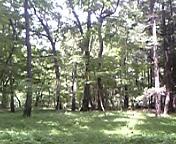 神代植物公園②