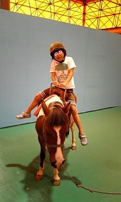 娘乗馬体験♪