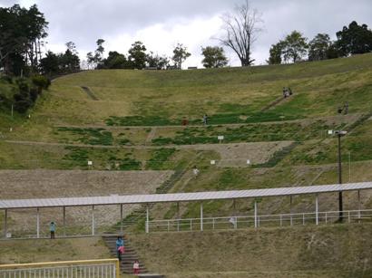 わんぱく公園 芝滑りの場所