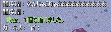 gosuta.jpg