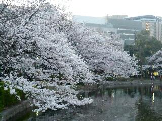 327上野公園