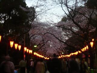 327上野公園1