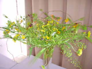flower084202.jpg
