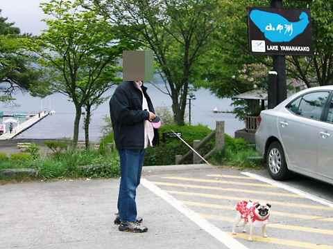 CIMG9114_20090525230619.jpg