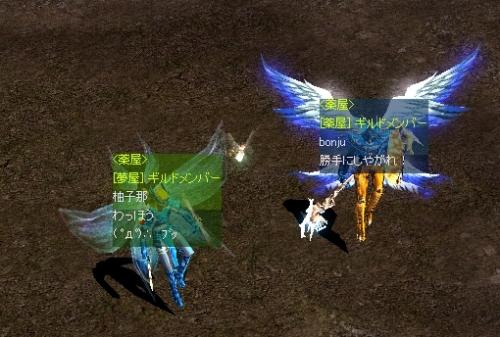 aa-yuzu3.jpg