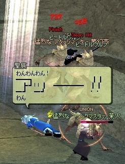 q-yuzu3.jpg