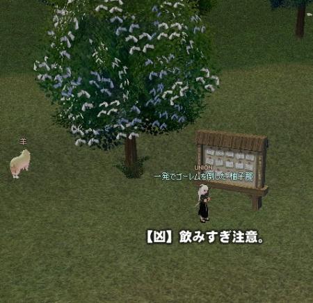 v-yuzu1.jpg