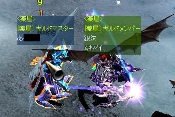z-gin9.jpg