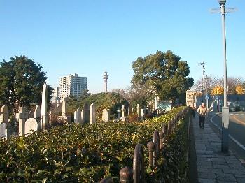 gaijinbochi.jpg