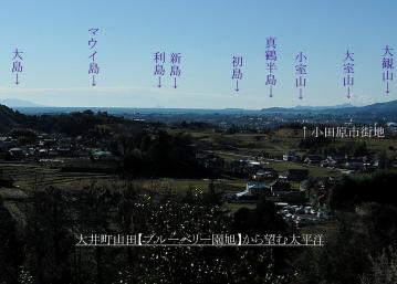 09201_1757 (16)asahi