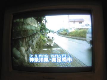nanami_2410.jpg