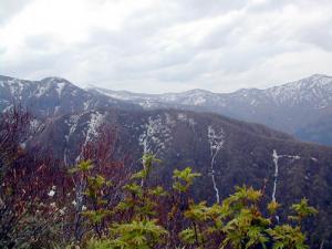 経ヶ岳方面