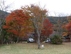 20081115-12s.jpg