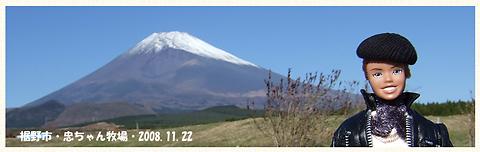 20081122-02.jpg