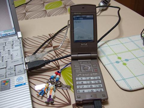 20090204-01.jpg