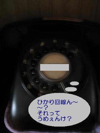 IMG_0329_20081029222500.jpg