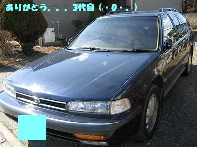 middle_1203420237.jpg
