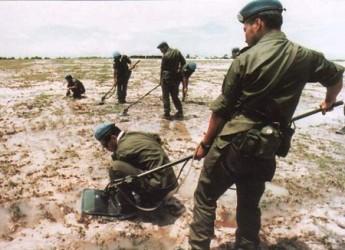 自衛隊員による地雷・不発弾等の除去作業