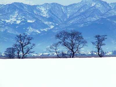 雪景色小諸