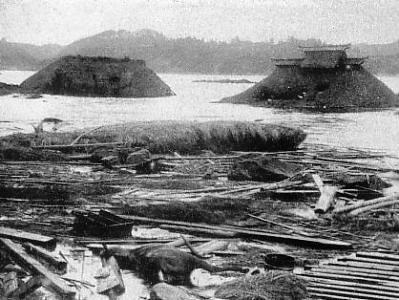 三陸沖地震の大津波による被害