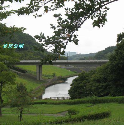 IMG_0157若宮公園