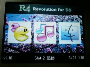 R4-skin_change_003.jpg