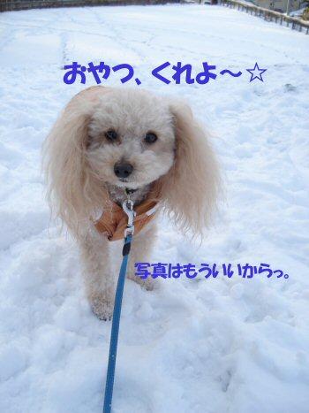 snow season2